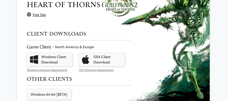 Guild wars 2 mac client download free.